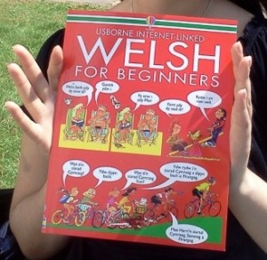 welshbook
